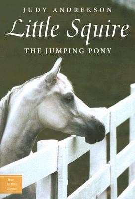 Little Squire By Andrekson, Judy/ Parkins, David (ILT)